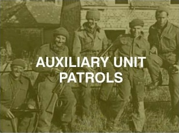 auxiliary units